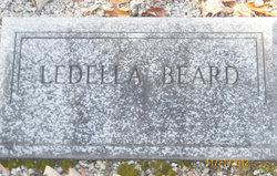 Ledella Beard