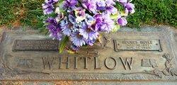 Grace Neta <i>Hartsoe</i> Whitlow