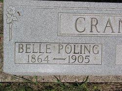 Indiabelle Belle <i>Poling</i> Crane