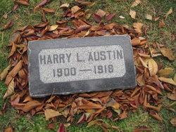 Harry Levi Austin