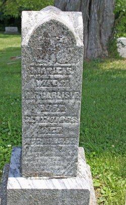 Marie S Carlisle