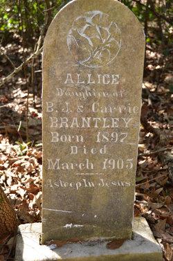 Allice Brantley