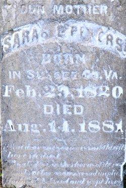 Sarah E Peters