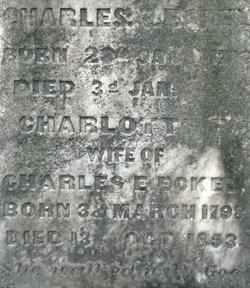 Charlotte H. <i>Perry</i> Eckel