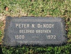 Pieter Nicolass Peter Nicholas De Nooy