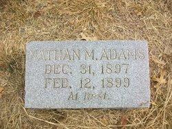 Nathan M Adams