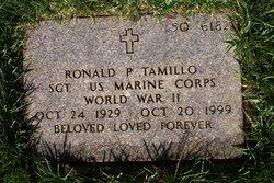 Ronald P Tamillo