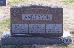 Henry L Anderson