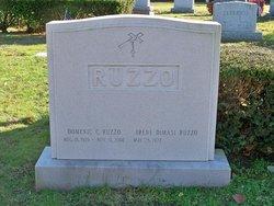 Irene <i>DiMasi</i> Ruzzo