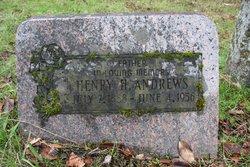 Henry Harrison Andrews