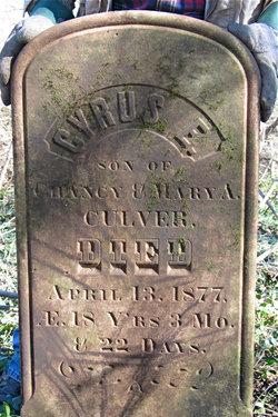 Cyrus E. Culver