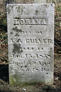 Lorana <i>Seward</i> Culver