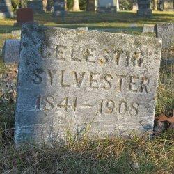 Celestin Sylvester
