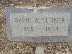 David William Turner