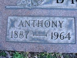Anthony Brelih