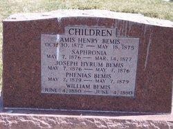 William Bemis Curtis