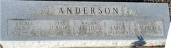Gust T Anderson, Jr