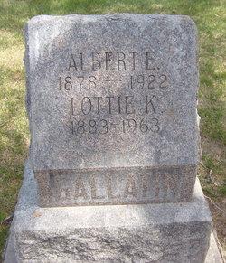 Albert E Gallatin