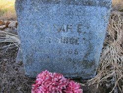 Sarah Eveline <i>Wade</i> Bissinger