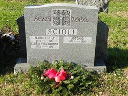 Maria Luigia <i>DiSciascio</i> Scioli