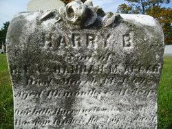 Harry B Apgar