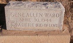 Gene Allen Ward
