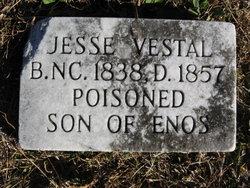 Jesse Vestal