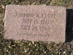 Johnnie R Lloyd