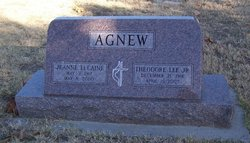 Theodore Lee Agnew, Jr