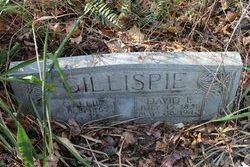 David E. Gillispie