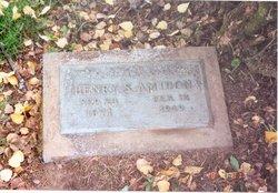 Henry Stuart Amidon