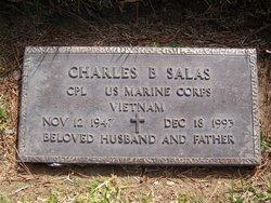 Charles Ballesteros Salas