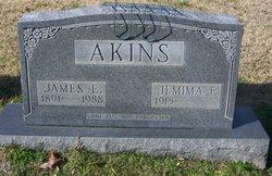 Jemima F. Akins