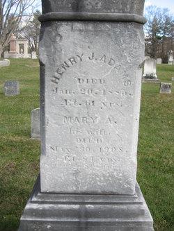 Mary Ann <i>Durant</i> Adams