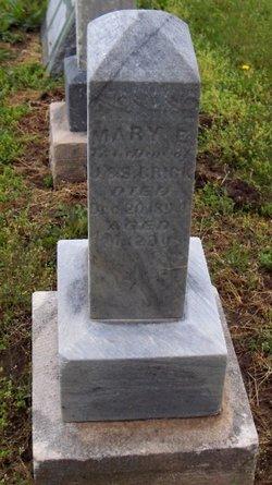 Mary E Crick