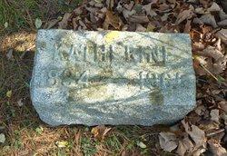 Katherine A <i>Hitchcock</i> Chapman