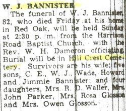William J Banister
