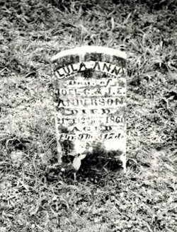 Lula Ann Anderson