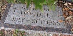 David J. Andy
