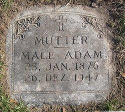 Male Adam