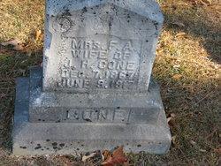 Phoebe Ann F A <i>Tolbert</i> Cone