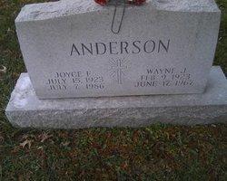 Joyce E Anderson