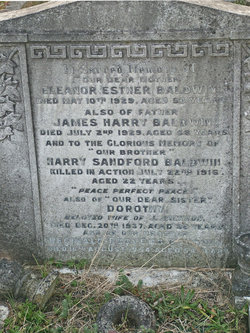 Harry Sandford Baldwin
