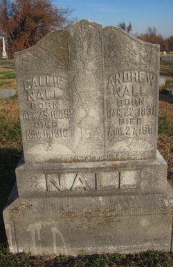 Andrew F Nall