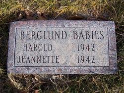 Harold Berglund
