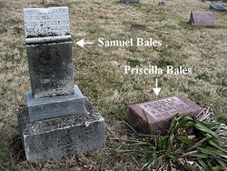 Samuel Blackburn Bales