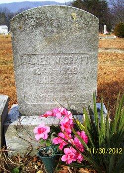 James William Craft