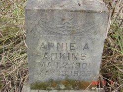 Arnie Adkins