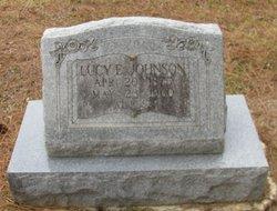 Lucy Ellen <i>Walters</i> Johnson