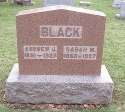 Andrew J. Black